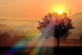 soleil-matin2